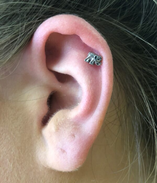 Elephant Ear Stud