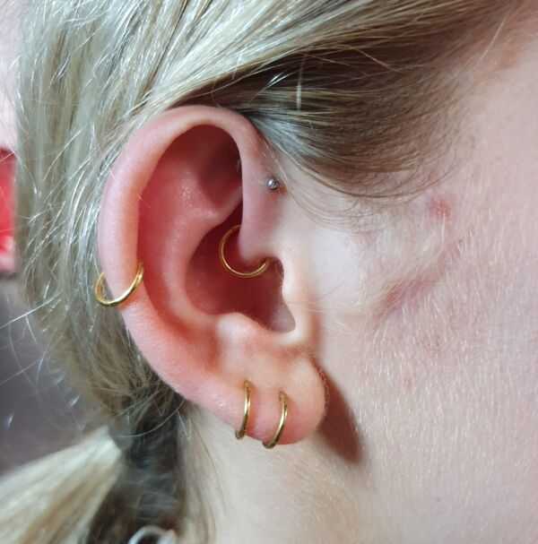 Gold Hinged Conch Ring