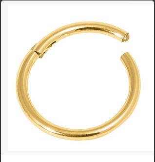 Gold Hinged Segment Ring