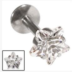 Jewelled Star Claw Set Stud
