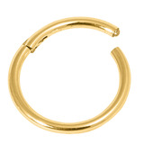 Gold Hinged Segment NOSE Ring